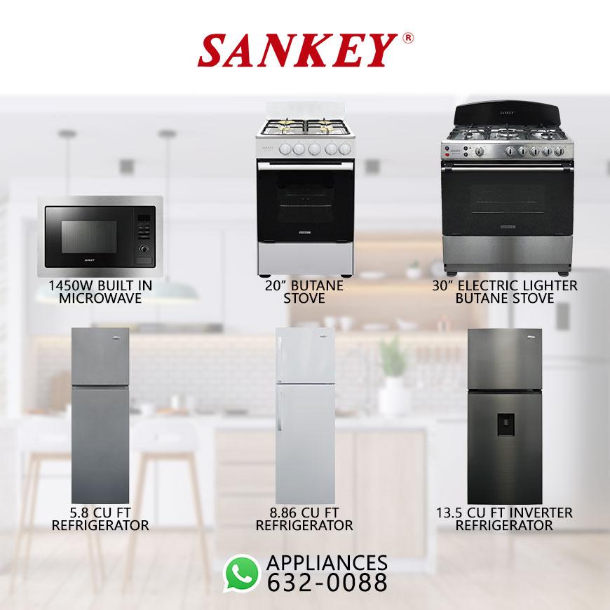 Sankey-Pg2