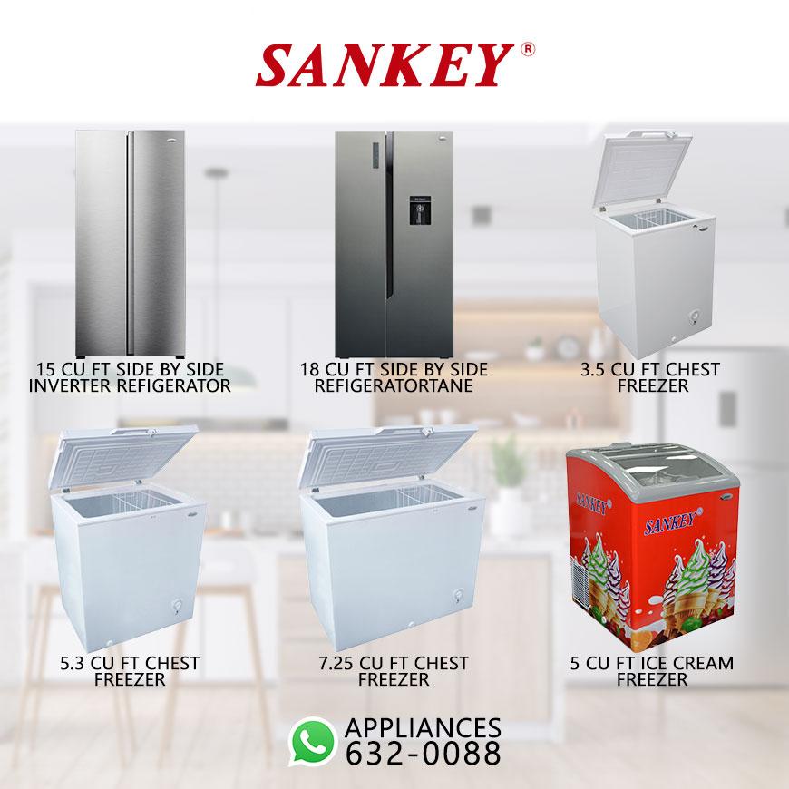 Sankey-Pg3